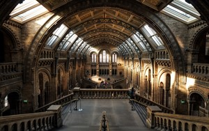 Museums & Galleries Tax Relief
